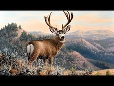 Landscape Painting Time-lapse   Mule Deer in the Badlands - YouTube