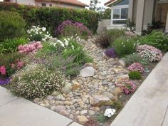1000+ ideas about No Grass Yard on Pinterest | No Grass ...