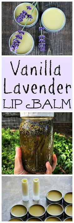 Make your own homemade vanilla lavender lip balm. It's an easy DIY herbal project that smells amazing!
