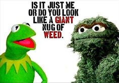 oscar-the-grouch-looks-like-weed.jpg 620×434 pixels