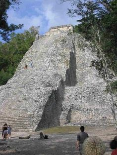 Coba, Yucatan, Mexico. A largely unrestored Mayan site.