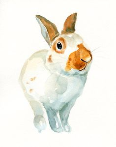 CUSTOM of your BUNNY Original watercolor painting by dimdi on Etsy, $38.00