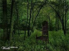 Bilderesultat for chair in forest