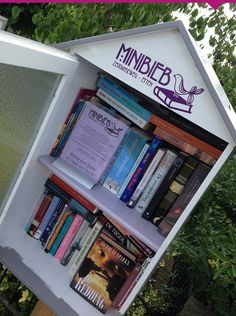 De Minibieb Zeddamseweg in Etten gld. Little Free Libraries, Little Library, Free Library, Dot Org, Home Libraries, Community Building, Bookcase, Have Fun, Mini