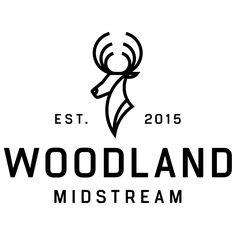 test monki, oil and gas, branding, the woodlands, logo design, website design, UX, logo design, business card design, deer