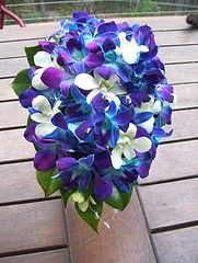 Blue Bridal Bouquets: All Orchids