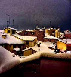 roofs under the snow