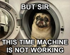 LOL been pinned so many times but just can not stop laughing whenever I see it!!