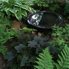 Shade garden with water basin    May 2012