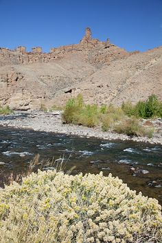 Shoshone River and Signal Peak, Shoshone National Forest, Wyoming; photo by Lisa Kyle Young