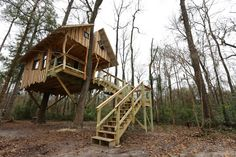 Treehouse cabin :: vacationing in a tree...