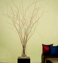 3-4ft Natural Birch Branches 15 stems approx. by GreenFloralCrafts