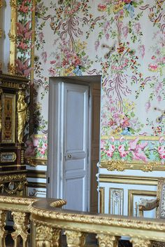 LA LIAISONS D'MARIE ANTOINETTE:  Secret Door