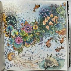 Flowers with a frog. Secret Garden. Flores com sapo. Jardim Secreto. Johanna Basford.