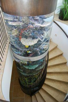 1000 id es sur le th me aquarium pas cher sur pinterest. Black Bedroom Furniture Sets. Home Design Ideas