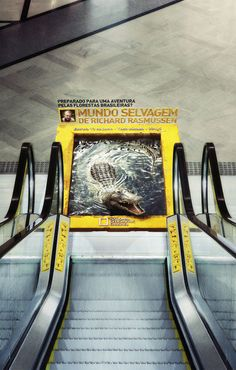 Guerrilla advertising from National Geographic in Brazil. This is a good piece of advertising because people can't ignore it if it's in their way. This will get people talking and sometimes word of mouth is the most effective method of marketing. Guerilla Marketing, Street Marketing, Experiential Marketing, Creative Advertising, Guerrilla Advertising, Advertising Campaign, Advertising Design, Targeted Advertising, Advertising Ideas