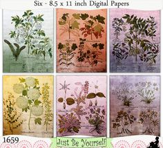 Instant Download Shabby Vintage Botanicals Set 1 Digital Papers by JustBYourself, $3.00 (1659)