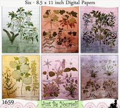 Instant Download Shabby Vintage Botanicals Set 1 Digital Papers by JustBYourself, $3.00 (1659)