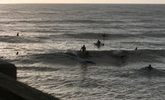 SurfJaxPier - The best place to get up-to-date surf reports