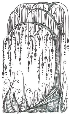 Images For > Simple Willow Tree Drawing