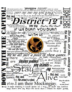 Hunger Games shirt quotes: I have to be careful not to read them all because I haven't read the last book yet!