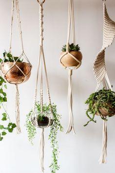#macetas #macetaspintadas #macetero #plantas #colgantes #plantsindoor #plants #homedecor #homedecorideas #homedecordiy