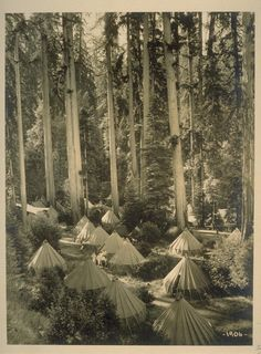 I just spent the morning finding out everything I can on theBohemian Grove. For two weeks every summer, the 2,700 acre secured private camp in the Ancient Redwood Forest of Northern California, plays host to some ofthe most powerful men in the world.Every republican U.S. president since 1923 has
