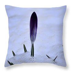 throw pillow Crocus In Snow Leif Sohlman