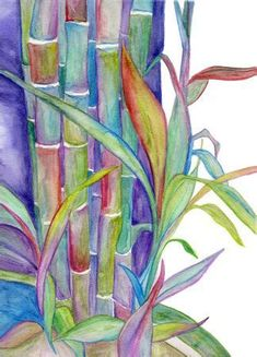 Image result for Potted Bamboo Watercolor