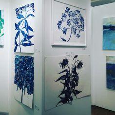 Cynthia MacCollum - Boneset, Botanical work on paper, Cyanotype, Blue, One of a kind Landscape Prints, Contemporary Landscape, Landscape Paintings, Impressionist Landscape, Cyanotype, Pink Tone, Mixing Prints, Home Art, Original Artwork