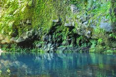 Poço Azul: trilho, como chegar, fotos e vídeo - Achadinha, Nordeste River, Outdoor, Water Pond, Railings, Lord, Tourism, Blue, Flowers, Travel