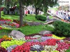 Beautiful garden photos