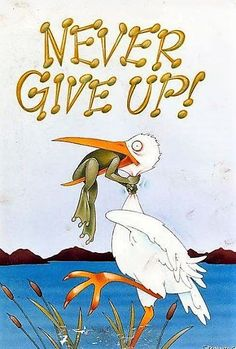 Never give up frog picture with a little frog struggling not to be eaten by stork. Funny never give up picture with frog and stork cartoon of don't ever give up. Motivational Quotes, Funny Quotes, Life Quotes, Inspirational Quotes, Quotes Pics, Insightful Quotes, Motivational Pictures, Quotes Images, Photo Quotes