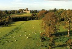 """Highclere castle and parkland designed by Capability Brown. Highclere is better known as """"Downton Abbey"""" to viewers. The Real Downton Abbey, Castle Howard, Horse Farms, Filming Locations, Hampshire, Garden Inspiration, Beautiful Places, Beautiful Homes, Places To Go"""