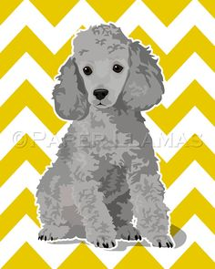 Awesome Poodle Art,  cusomtizable!