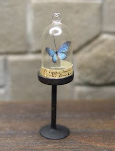 EV Miniatures: Curiosities and Butterflies