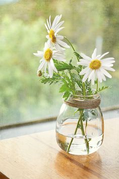 Twine about the top of glass jars to hide the rim and create a lovely, simple vase. Love this idea.
