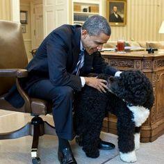 President and Bo Obama...
