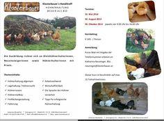 Biogarten auf Klostergrund + Hühnerschule damit auch bei DIR zu Haus bald biebst! Fandom, Eco Garden, School, House