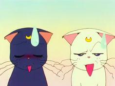 luna and artemis from sailor moon! Sailor Mars, Sailor Moon Art, Sailor Moon Crystal, Sailor Moon Aesthetic, Aesthetic Anime, Manga, Sailor Saturno, Luna And Artemis, Sailor Moon Screencaps