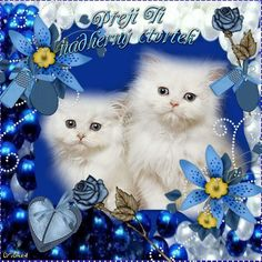 Blessed Night, Beautiful Handwriting, Fantasy Pictures, Humor, Cute Baby Animals, Cats And Kittens, Good Morning, Beautiful Flowers, Cute Babies