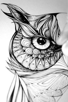 Gregor the Owl on Behance by Greg Coulton (ink drawing)