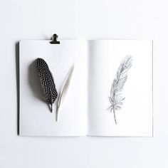 An overview of all the inkylines drawings and sketches. Feather Drawing, Flower Outline, Drawing Sketches, Drawings, How To Draw Hands, Ink, Tatoos, Naked, Ideas