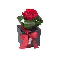 Caixa Preta com Rosa Solitária (P)