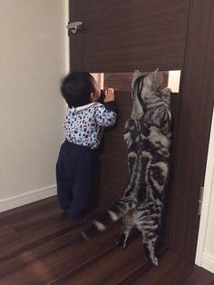 E' un gatto gigante o un bambino mooolto piccolo :)