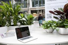 eFIG pop up office for National Plant at Work Week