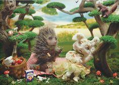Prickly picnic - Laura Plansker
