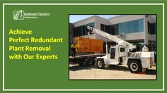 Achieve Perfect Redundant Plant Removal with Our Experts