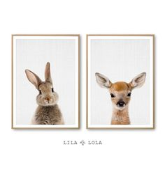 Lila x Lola - Etsy - 6 Posters - Print - Wall art - Animals - dieren - dierenprint - kids room - baby kamer - kinder kamer - digitaal. Nursery Prints, Nursery Wall Art, Wall Art Decor, Nursery Ideas, Woodland Nursery Girl, Woodland Baby, Woodworking Projects That Sell, Kids Woodworking, Ranger