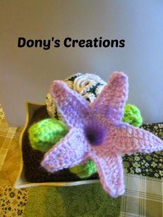 Buongiorno     ieri ho creato in uncinetto il cactus Asclepiadaceae, ha un fiore particolare sembra un calice.     Quello che ho creato ...